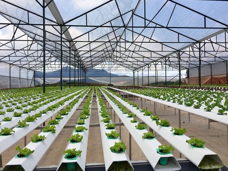 Bộ Xây dựng góp ý Đề án thành lập Khu nông nghiệp ứng dụng công nghệ cao Quảng Ninh