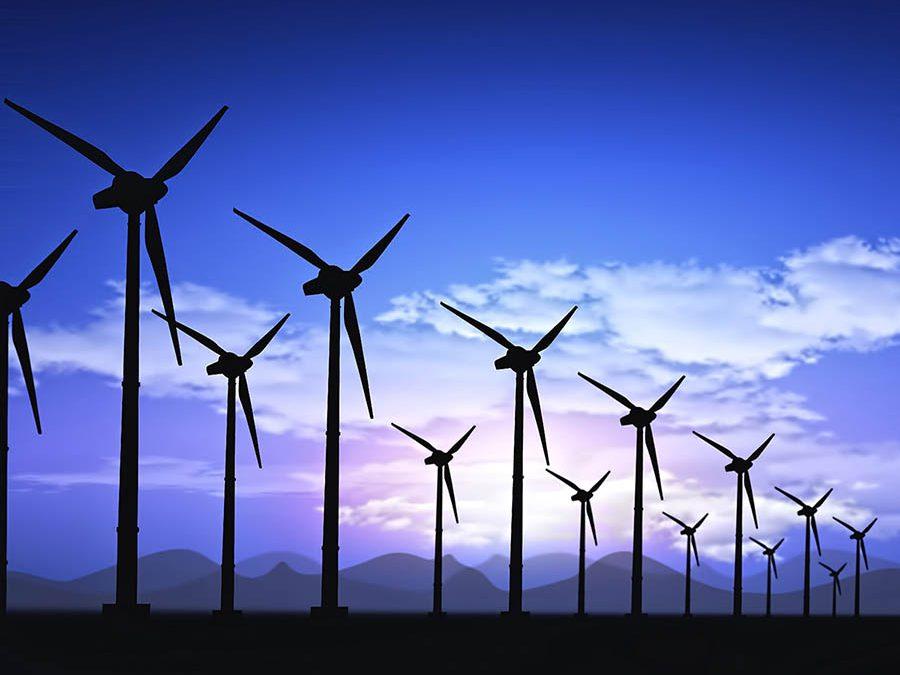 Cà Mau khởi công xây dựng nhà máy điện gió trị giá gần 3.000 tỉ đồng